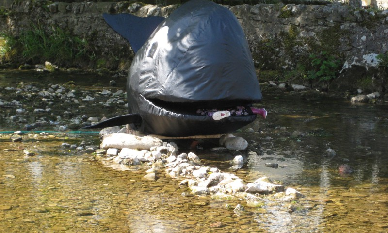 Whale in Malham