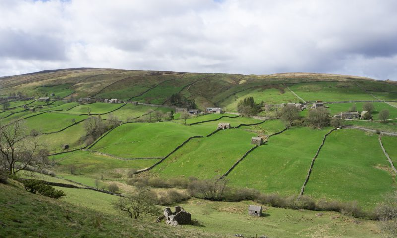 Walls and Barns Swaledale
