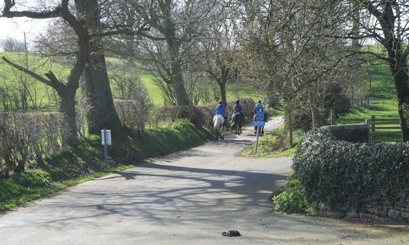 Horses on Trenet Lane bridleway