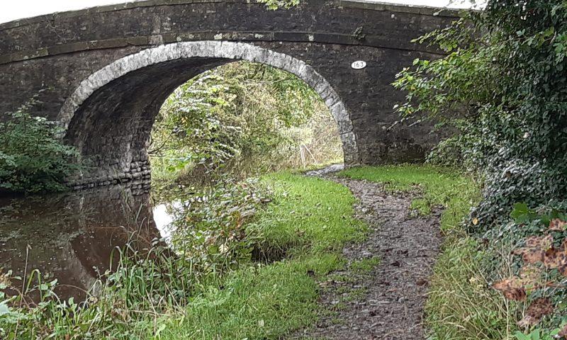 Bridge 163