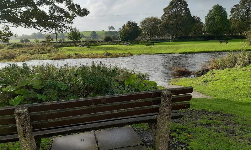 Bench by stepping stones