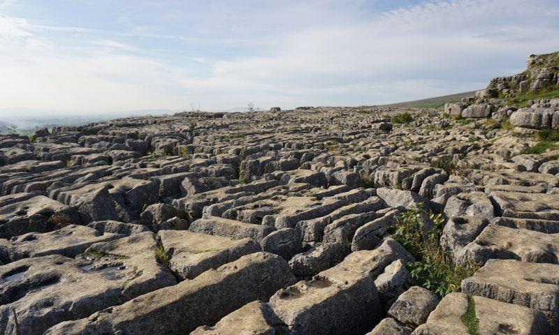 Limestone Pavement, Malham